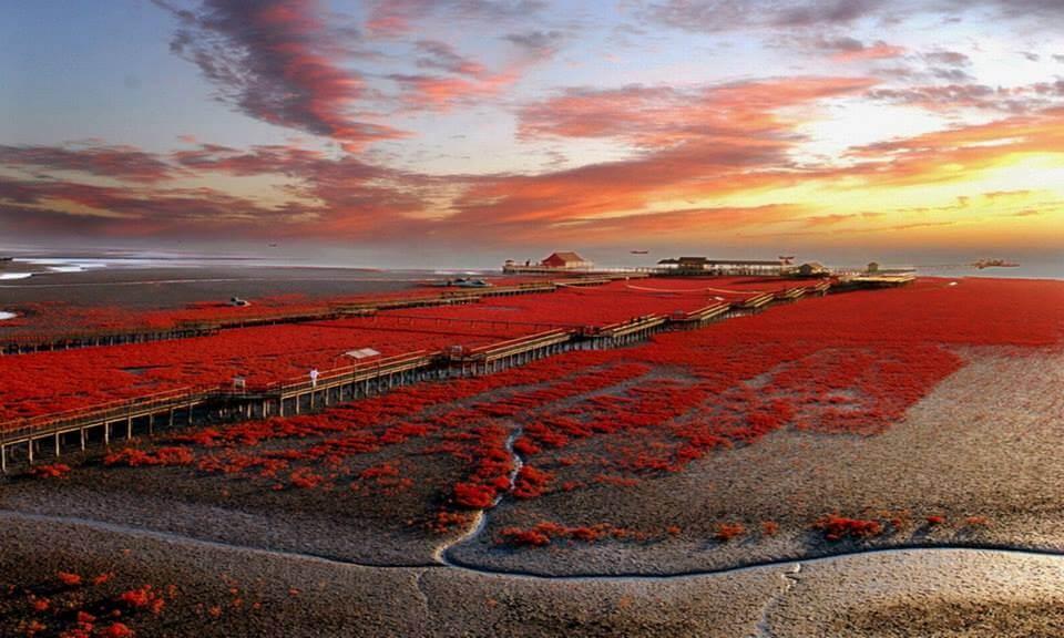SuperSonic Radio - SuperSonic Radio - Unde se poate face o plimbare pe o plajă Roșie?